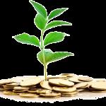 Réforme de la fiscalité des entreprises et politique familiale